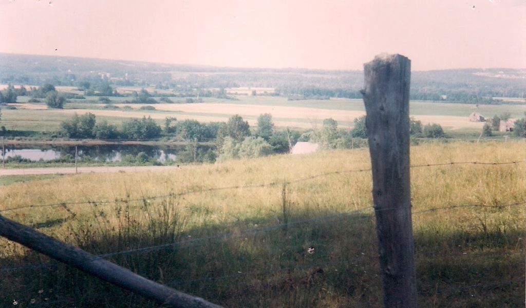 view of a river and its  islands from a hilltop pasture, Douglas New Brunswick in the seventies.