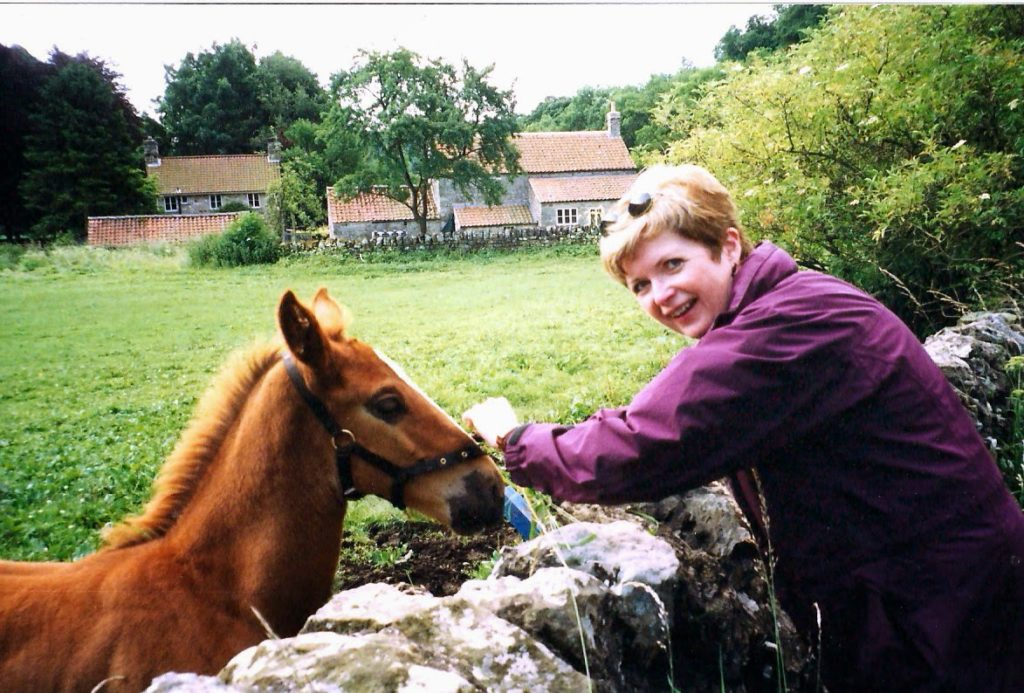 woman leaning over a stone fence to pat a colt