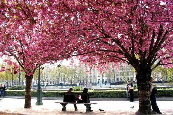Paris in Spring thesundaytimes.co.uk