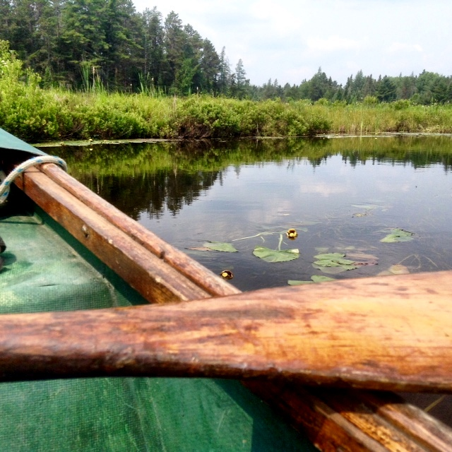 canoeing the Bonnechere River in Ontario