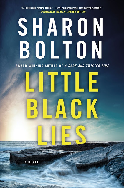 Little Black Lies is based on a great concept but is a flawed book.