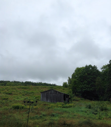 A cloudy September day looking over the old pasture on the farm in Douglas, N.B.