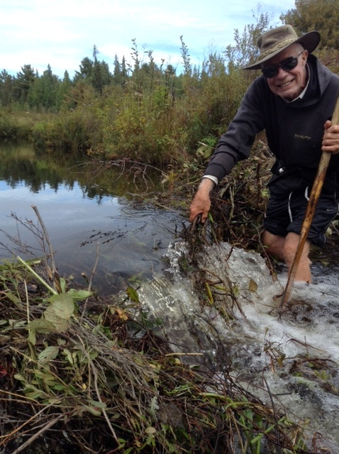 Breaking up a beaver dam on the Bonnechere River