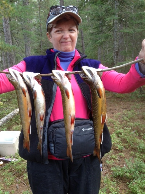 Four lovely brook trout caught on the Bonnechere River