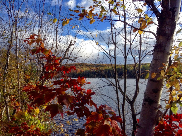 Fall camping. Driving by Paugh Lake, red leaves on the maple trees