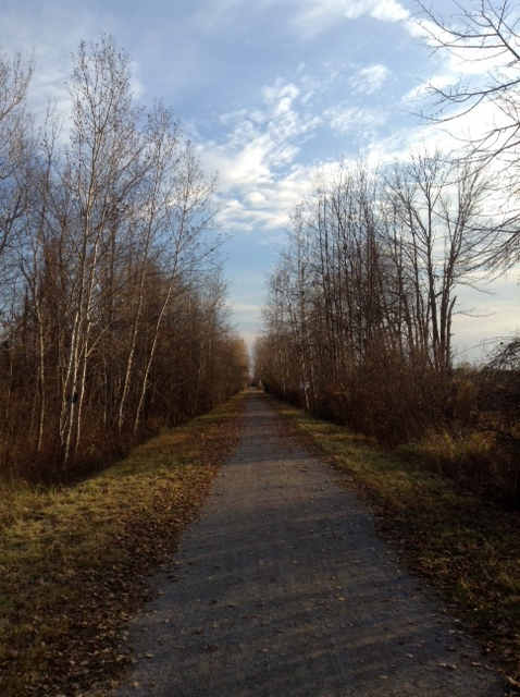 Sunny fall day on the Osgoode Trail, near Osgoode, Ontario.