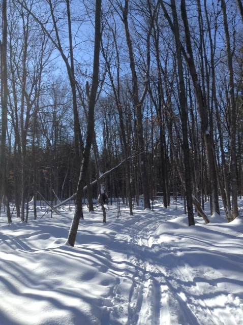 The ski trail at Stoney Swamp, near Kanata, Ontario.
