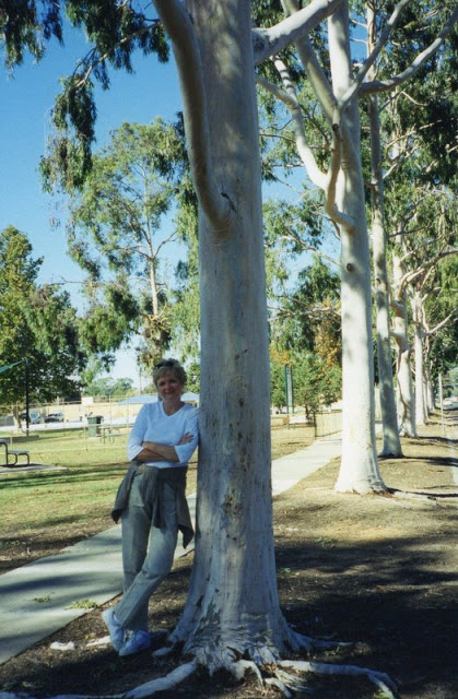Leaning against a gorgeous gum tree in Numurakah,