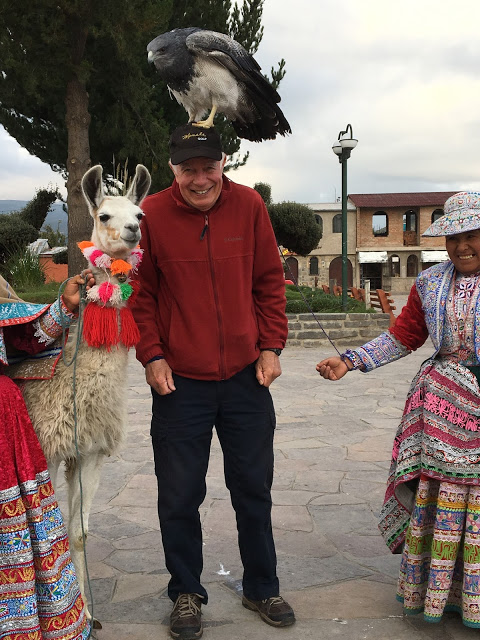 posing with a tame hawk on his head in Maca, Peru