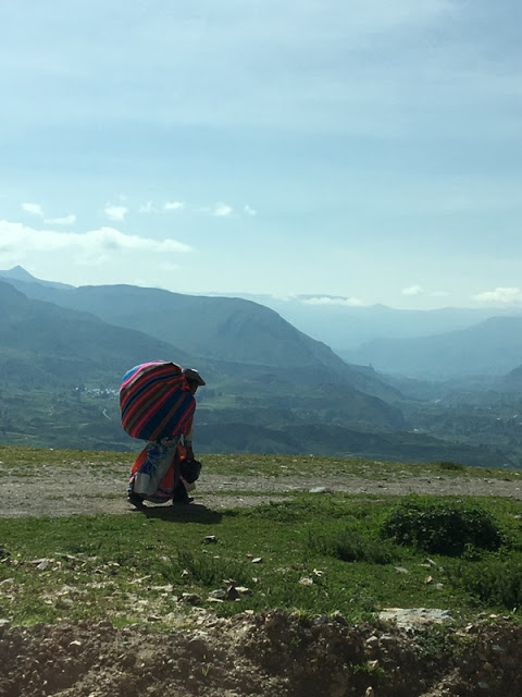 lady walking along road near Colca Canyon, Peru