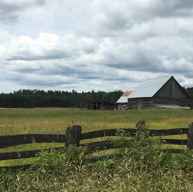 split rail fence, log barns, and a pasture surrounded by bush