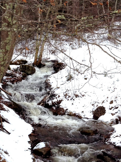 brook gushes between snow-covered banks