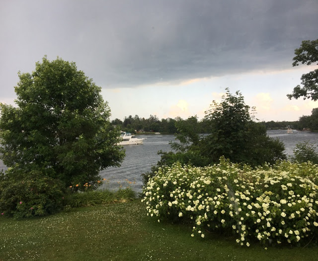 flowers, lawn, river, and dark clouds in the sky